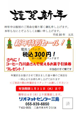 rionet_mishima